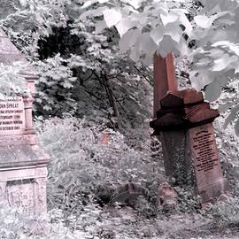 Helga Novelli - Winter infrared cemetery