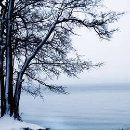 Winter - Joanna Jankowska