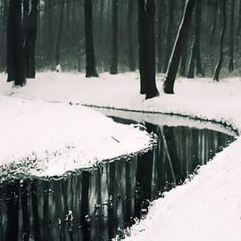 Winter lake - Joanna Jankowska