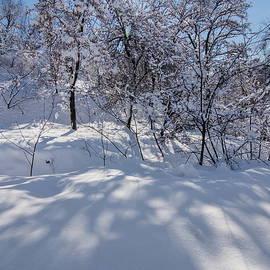 Marat Jolon - Winter Landscape-1