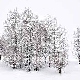 Andrei Iliescu - Winter landscape
