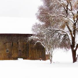 Dee Browning - Winter Farm Landscape II