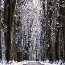 Winter Lane - Martin Podt