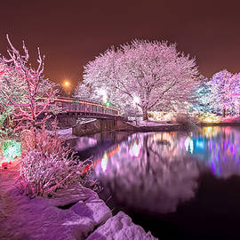 Gord Follett - Winter Lights at Bowring Park