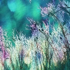 Kathy Bassett - Winter Lights