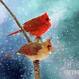 Darren Fisher - Winter Love