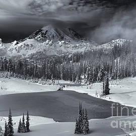 Mike Dawson - Winter Majestic