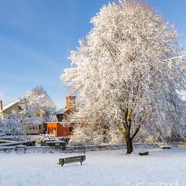 Tony Baldasaro - Winter Morning in Exeter