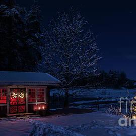 Torbjorn Swenelius - Winter night