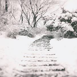 Vivienne Gucwa - Winter Path