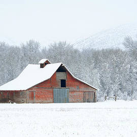 Mike Dawson - Winter Red Barn