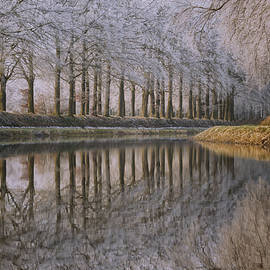 Winter Reflections III - Martin Podt