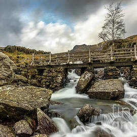 Adrian Evans - Winter River Rapids