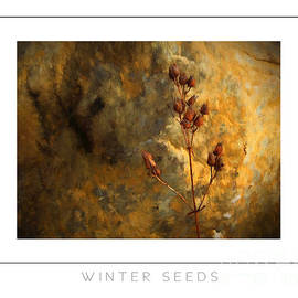 Mike Nellums - Winter Seeds poster