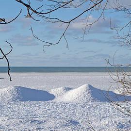 Ann Horn - Winter Shoreline