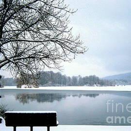 Linda Galok - Winter Solitude