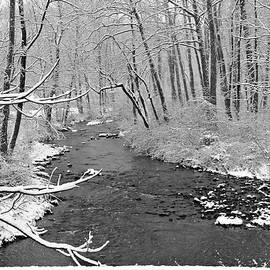 Brenda Conrad - Winter Stream Card