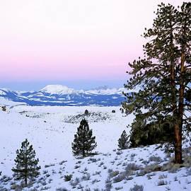 Nadine Johnston - Winter Sunrise in the Mountains