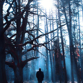 Winter tale - Joanna Jankowska