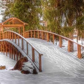 Sharon McConnell - Winter Walking Bridge