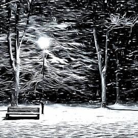 Mario Carini - Winter Wonder at the Park