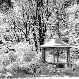 Allen Beatty - Winter Wonderland 17