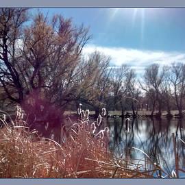 Gretchen Wrede - Winters Fluff Shimmering in Sunlight