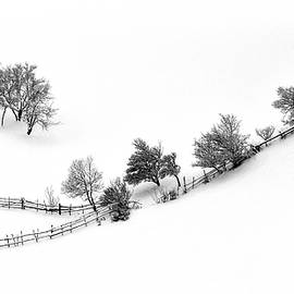 Andrei Iliescu - Wintertale