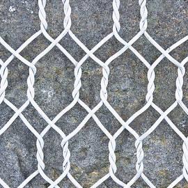 Wire mesh - Tom Gowanlock