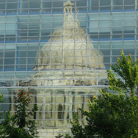 David T Wilkinson - Wisconsin State Capital Reflection