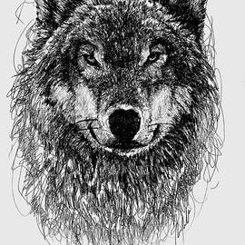 Michael  Volpicelli  - Wolf