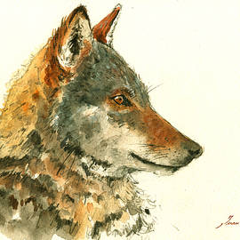 Wolf watercolor - Juan  Bosco
