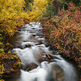 Vishwanath Bhat - Wonderful Palisades Creek Autumn Glory in Idaho
