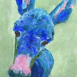 Jamie Frier - Wonkey Donkey