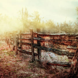 Debra and Dave Vanderlaan - Wood Fences in the Fog