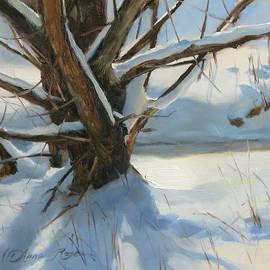 Wood Run Stream - Anna Rose Bain