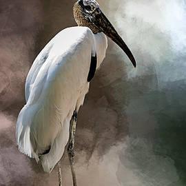 Cyndy Doty - Wood Stork