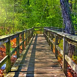 Stephen Younts - Wooded Walkway