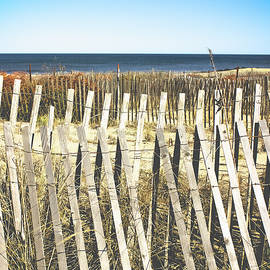 Colleen Kammerer - Wooden Beach Fence I