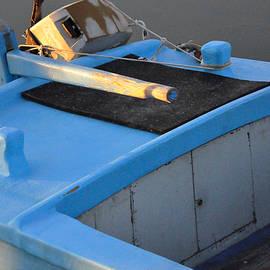 Damijana Cermelj - Wooden boat