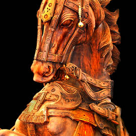 Charuhas Images - Wooden Horse