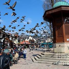 Imran Ahmed - Wooden Ottoman Sebilj water fountain in Sarajevo Bascarsija Bosnia