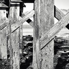 Wooden walkway - Tom Gowanlock
