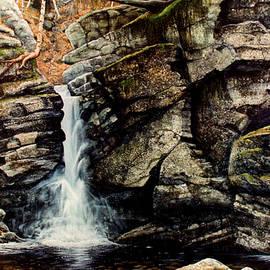 Frank Wilson - Woodland Falls
