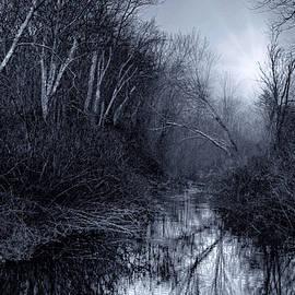 Robin-lee Vieira - Woodland River