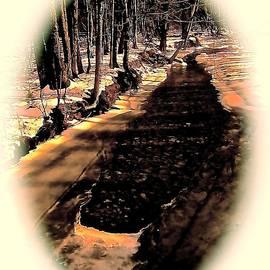 Elizabeth Tillar - Woodland Stream