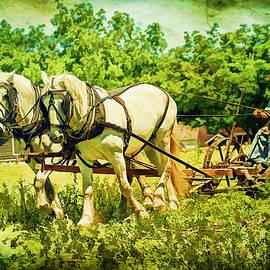 Geraldine Scull   - Work Horses And Plow Reenactment