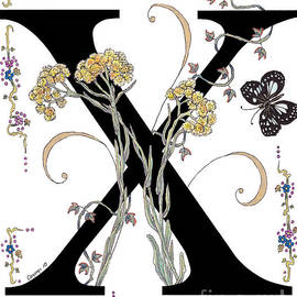 Stanza Widen - X is for Xeratum and a Forest Queen Butterfly