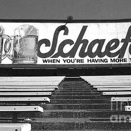Ross Lewis - Yankee Stadium-Final Day in the Bleachers