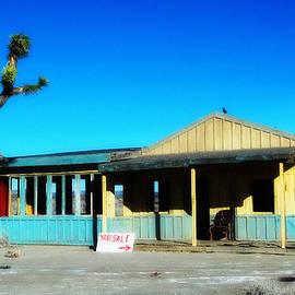 Glenn McCarthy - Yard Sale - El Mirage California